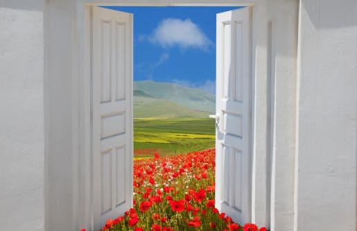 Open_Door1