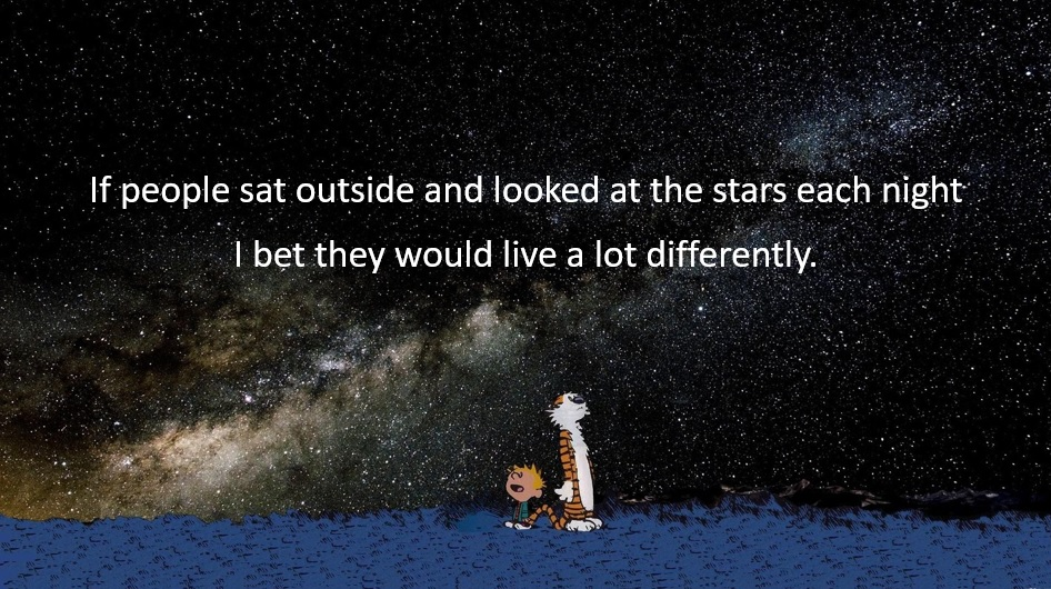 Calvin_stars