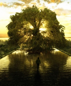 tree-of-life3_1